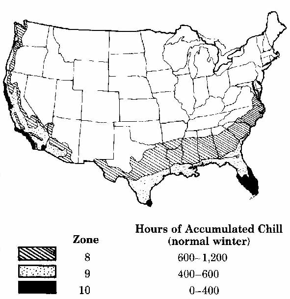 This graphic shows the approximate chill hours accumulated in different parts of the country.